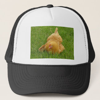 Momma chicken and baby chick trucker hat