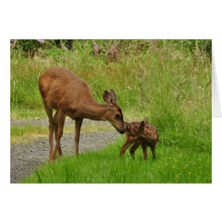 Momma Deer and her Newborn Fawn Card
