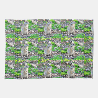 """Momma In Waiting"" Kitchen Towel"