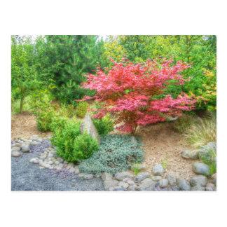 Momotaro Japanese Garden 3 Postcard
