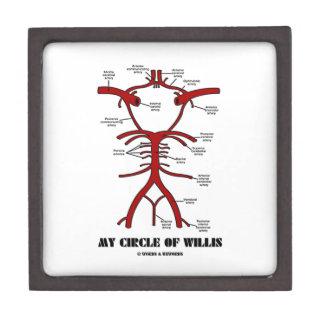 Mon cercle de willis (anatomique) coffret cadeau de première qualité