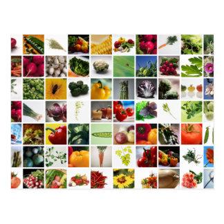 Mon jardin coloré cartes postales