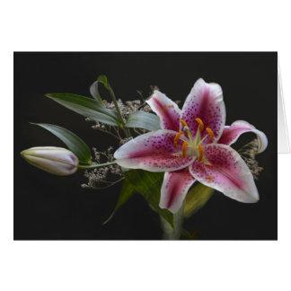 Mona Lisa Lily - Beautiful Flower Card