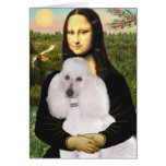 Mona-Pood-White-Standard Poodle
