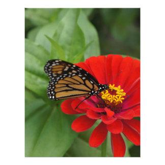 Monarch Beauty Letterhead Template