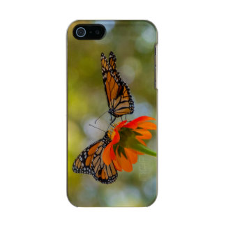 Monarch Butterflies on Wildflowers Incipio Feather® Shine iPhone 5 Case