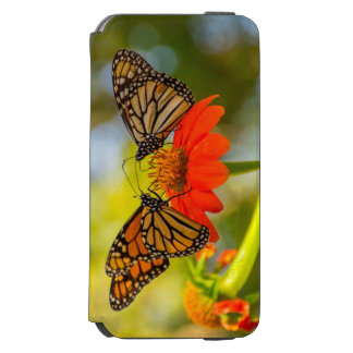 Monarch Butterflies on Wildflowers Incipio Watson™ iPhone 6 Wallet Case
