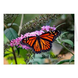 Monarch Butterfly 5100 Wedding Congrats Card