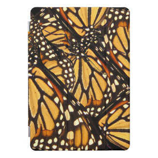 Monarch Butterfly Abstract 10.5 iPad Pro Case