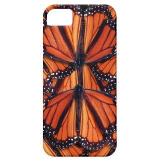 monarch butterfly art case for the iPhone 5