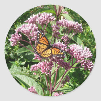 Monarch Butterfly Classic Round Sticker
