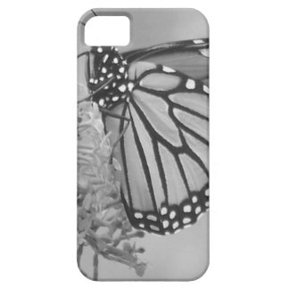 Monarch Butterfly Clothing iPhone 5 Case