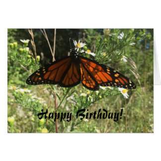 Monarch Butterfly. Happy Birthday. Card