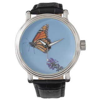 Monarch Butterfly in Flight watch