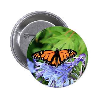 Monarch butterfly in garden 2 inch round button