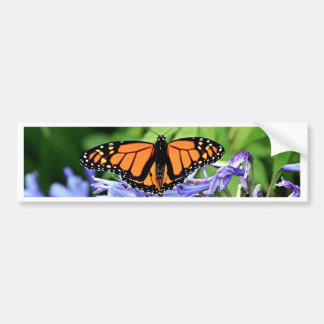 Monarch butterfly in garden bumper sticker