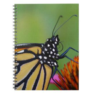 Monarch Butterfly Journal Notebook