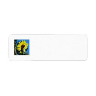 Monarch Butterfly Custom Return Address Labels