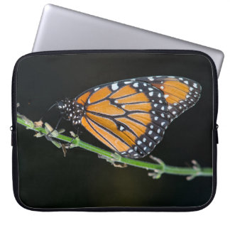 Monarch Butterfly Laptop Computer Sleeve