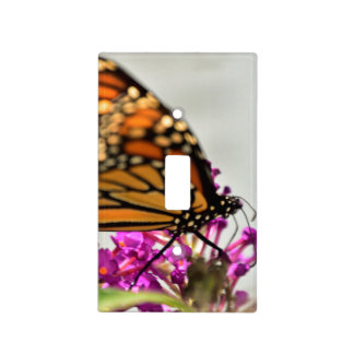 Monarch Butterfly Light Switch Cover