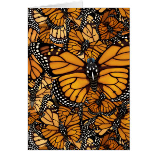 Monarch Butterfly Migration Card