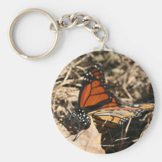 Monarch Butterfly Nature Photo Keychain Keyring