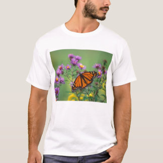 Monarch Butterfly on Asters T-Shirt