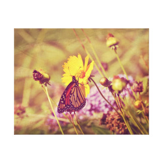 Monarch Butterfly on Bright Yellow Wild Flower Canvas Print
