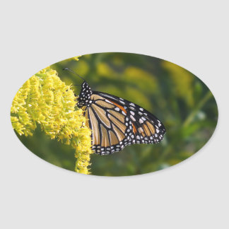 Monarch Butterfly on Goldenrod Oval Shaped Sticker