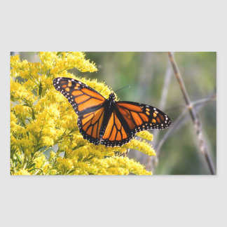 Monarch Butterfly on Goldenrod Rectangle Sticker