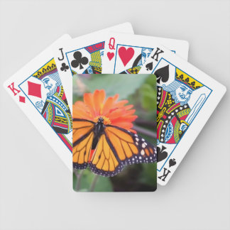 Monarch butterfly on orange flower bicycle playing cards