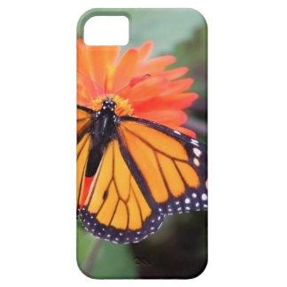 Monarch butterfly on orange flower iPhone 5 case