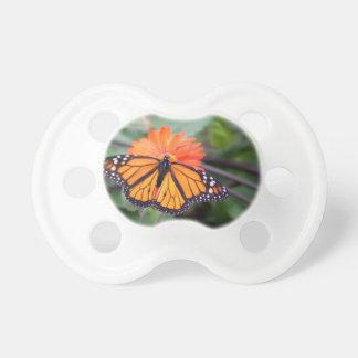 Monarch butterfly on orange flower pacifier