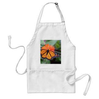 Monarch butterfly on orange flower standard apron