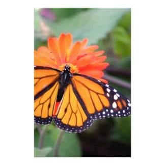 Monarch butterfly on orange flower stationery