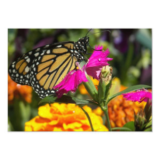 Monarch Butterfly on pink marigold-invitations Card