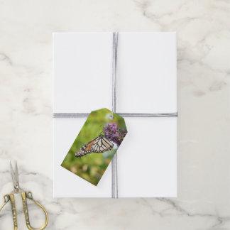 Monarch Butterfly on Purple Butterfly Bush Gift Tags