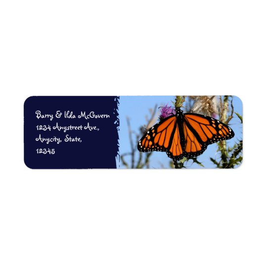 Monarch Butterfly on Purple Thistles Dark Blue