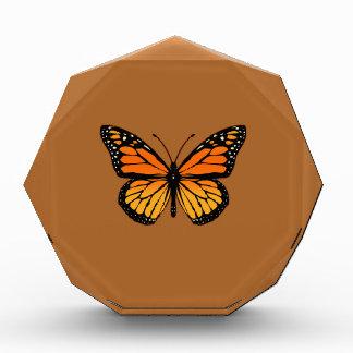 Monarch Butterfly on Sienna