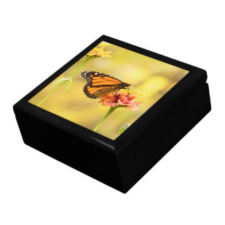 Monarch Butterfly on Zinnia Gift Box