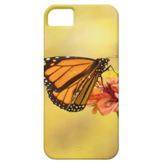Monarch Butterfly on Zinnia iPhone 5 Case
