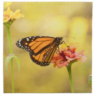 Monarch Butterfly on Zinnia Napkin