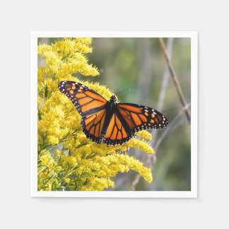 Monarch Butterfly Paper Napkin