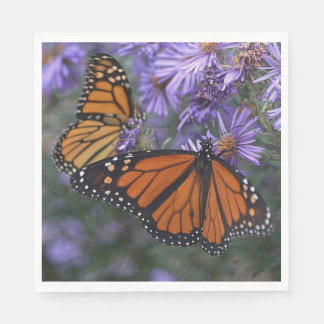 Monarch Butterfly Paper Napkins