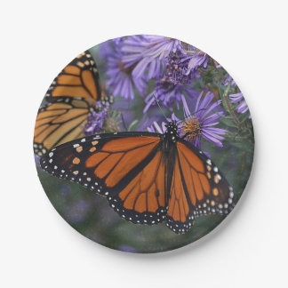Monarch Butterfly Paper Plate