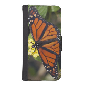 Monarch Butterfly Phone Wallet (all models)