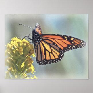 Monarch Butterfly Print