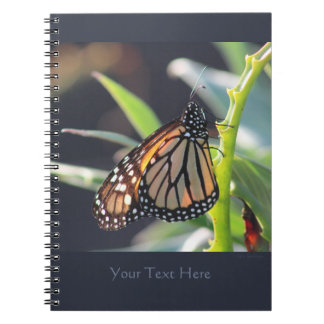 Monarch Butterfly Spiral Notebook 2