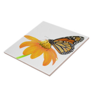 Monarch Butterfly Sunflower Flower Wildlife Floral Tile
