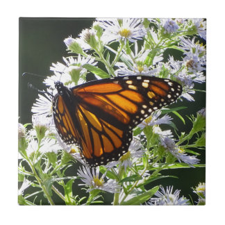 Monarch Butterfly Tiles